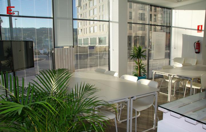 Oficinas verdes: ventajas y consejos para crearlas